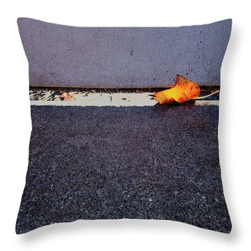 Leaf On A Stone Bench Throw Pillow