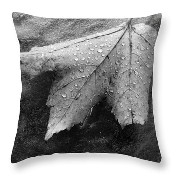 Leaf On Glass Throw Pillow