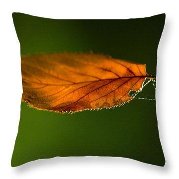 Leaf On Spiderwebstring Throw Pillow
