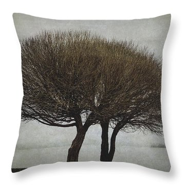 Throw Pillow featuring the photograph Leafless Couple by Ari Salmela