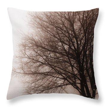 Leafless Tree In Fog Throw Pillow by Elena Elisseeva