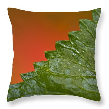 Leafy Throw Pillow by Heiko Koehrer-Wagner