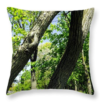Throw Pillow featuring the photograph Lean On Me by Robyn King