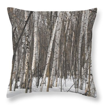 Leaning Birches Throw Pillow by Erick Schmidt