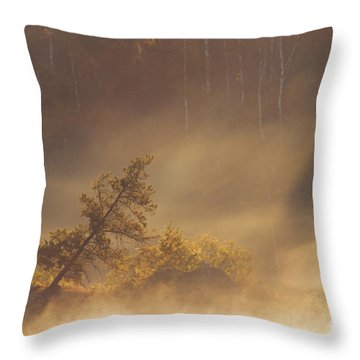 Leaning Tree In Swirling Fog Throw Pillow by Larry Ricker
