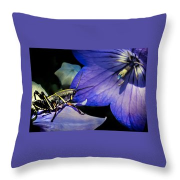 Contemplation Of A Pistil Throw Pillow