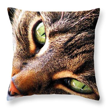Learn To Linger Throw Pillow
