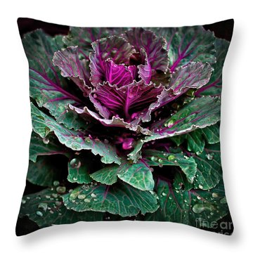Decorative Cabbage After Rain Photograph Throw Pillow by Walt Foegelle