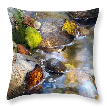 Leaves And Needles Throw Pillow