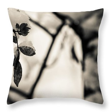 Leaves And Snow Throw Pillow by Andreas Levi