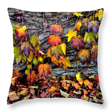 Leaves At The Levee Throw Pillow