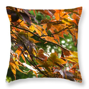 Leaves Throw Pillow by Ernest Puglisi