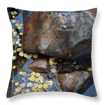Leaves In A Stream Throw Pillow by Jim Garrison