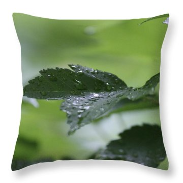 Leaves In The Rain Throw Pillow
