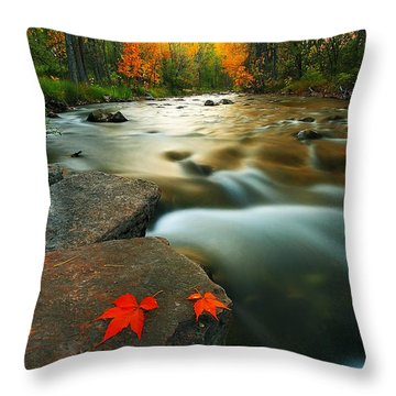 Throw Pillow featuring the photograph Leaves by Kadek Susanto