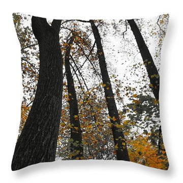 Throw Pillow featuring the photograph Leaves Lost by Photographic Arts And Design Studio