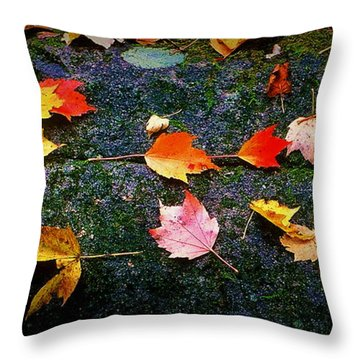 Leaves On Rock  Throw Pillow