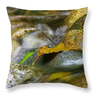 Leaves On The Rocks Throw Pillow