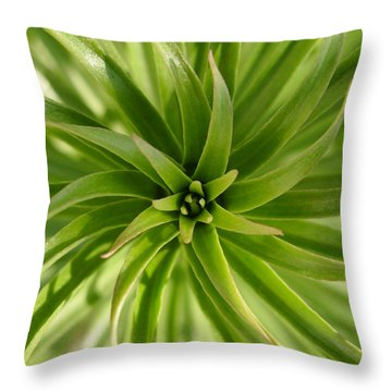 Leaves Spiral Throw Pillow by Eva Csilla Horvath