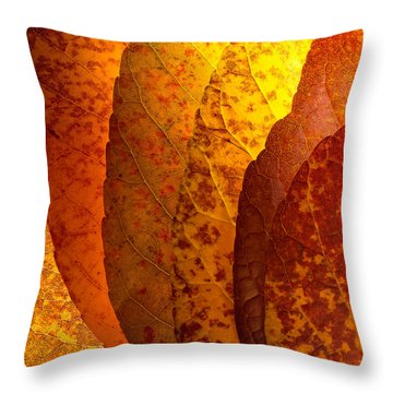 Leaves Unmasked Throw Pillow