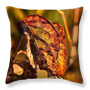 Leaving Autumn Throw Pillow
