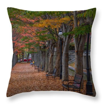 Throw Pillow featuring the photograph Leaving by Glenn DiPaola