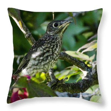 Left The Nest Throw Pillow by Judy Wolinsky