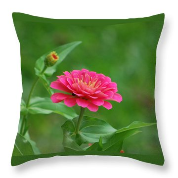 Legacy Throw Pillow by Bob Sample