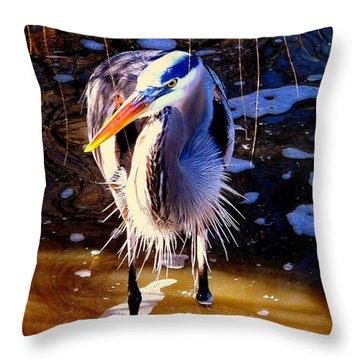 Throw Pillow featuring the photograph Legs by Faith Williams