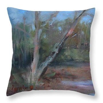 Leiper's Creek Study Throw Pillow by Carol Berning