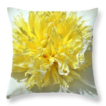 Throw Pillow featuring the photograph Lemon Drop by Lilliana Mendez