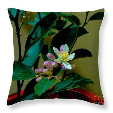 Lemon Tree Flower Throw Pillow