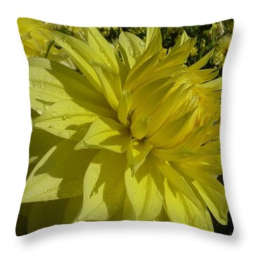 Throw Pillow featuring the photograph Lemon Yellow Dahlia  by Susan Garren