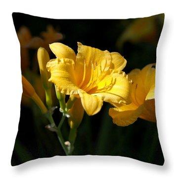 Lemon Yellow Daylilies Throw Pillow by Rona Black