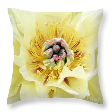 Lemonade Throw Pillow