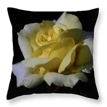 Lemoncandy Throw Pillow by Doug Norkum