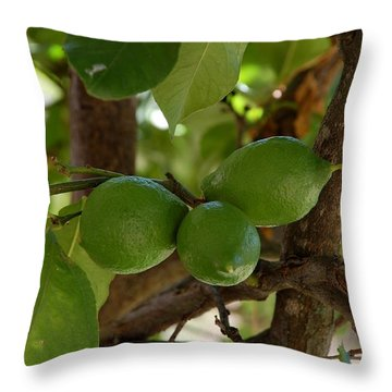 Lemons Trio Throw Pillow