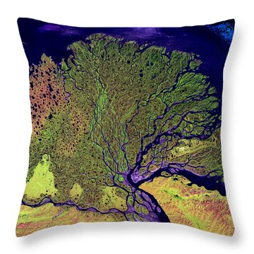 Lena Delta Throw Pillow