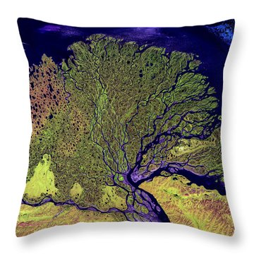 Lena River Delta Throw Pillow