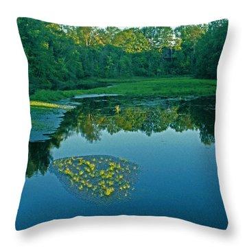 Leo Creek Throw Pillow