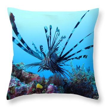 Leon Fish Throw Pillow by Sergey Lukashin