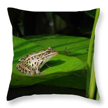 Leopard And Lily Throw Pillow by Janice Adomeit