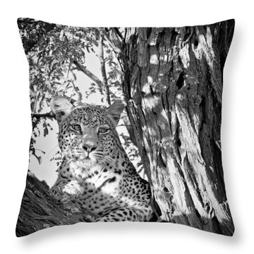 Leopard II Throw Pillow