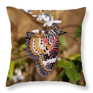 Leopard Lacewing Butterfly Dthu619 Throw Pillow