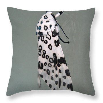 Leopard Moth Throw Pillow