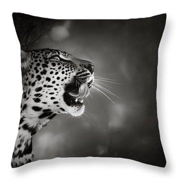 Leopard Portrait Throw Pillow by Johan Swanepoel