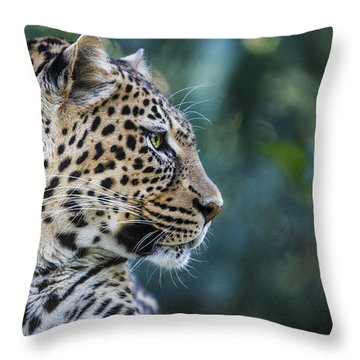 Leopard's Look Throw Pillow by Jaki Miller