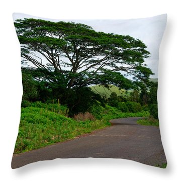 Less Traveled Road Throw Pillow