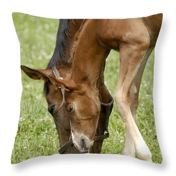 Throw Pillow featuring the photograph Lessons From Mom by Sami Martin