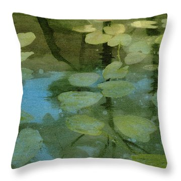 Lessons Of The Lake Throw Pillow by Kris Parins